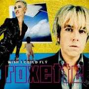 Coverafbeelding Roxette - Wish I Could Fly