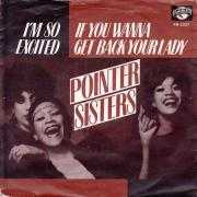 Coverafbeelding Pointer Sisters - If You Wanna Get Back Your Lady