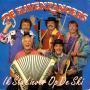 Coverafbeelding De Havenzangers - Ik Sta Liever Op De Ski