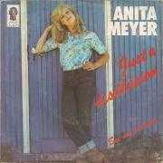Coverafbeelding Anita Meyer - Just A Disillusion