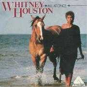 Coverafbeelding Whitney Houston - All At Once