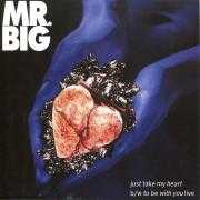 Details Mr. Big ((USA)) - Just Take My Heart