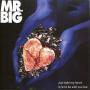 Coverafbeelding Mr. Big ((USA)) - Just Take My Heart