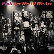 Coverafbeelding p!nk - are we all we are