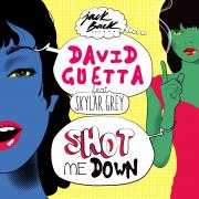 Details David Guetta feat Skylar Grey - Shot me down