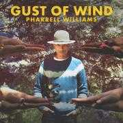 Details Pharrell Williams - Gust of wind