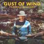 Coverafbeelding Pharrell Williams - Gust of wind