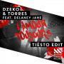 Coverafbeelding Dzeko & Torres feat. Delaney Jane - L'amour toujours - Tiësto edit