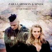 Details Zara Larsson & MNEK - Never forget you