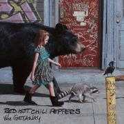 Coverafbeelding Red Hot Chili Peppers - Dark necessities