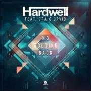 Coverafbeelding Hardwell feat. Craig David - No holding back