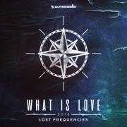Coverafbeelding Lost Frequencies - What is love 2016