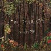 Details The Paper Kites - Bloom