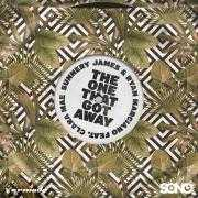 Details Sunnery James & Ryan Marciano feat. Clara Mae - The one that got away