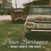 Details Pleun Bierbooms - What hurts the most