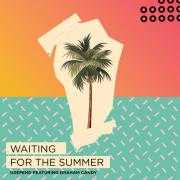 Details Deepend featuring Graham Candy - Waiting for the summer