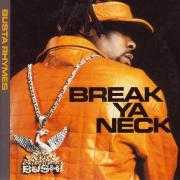 Details Busta Rhymes - Break Ya Neck