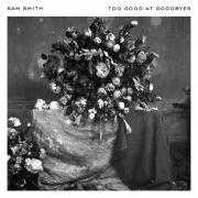 Informatie Top 40-hit Sam Smith - Too good at goodbyes