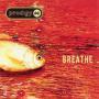 Coverafbeelding Prodigy - Breathe
