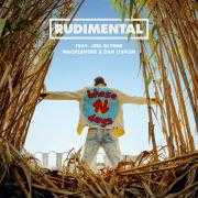 Informatie Top 40-hit Rudimental feat: Jess Glynne & Macklemore & Dan Caplen - These days