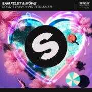 Coverafbeelding Sam Feldt & Möwe (feat. Karra) - Down for anything