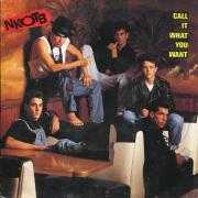 Coverafbeelding NKOTB - Call It What You Want