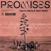 Details Calvin Harris & Sam Smith - Promises