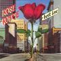 Details Rose Royce - Best Love