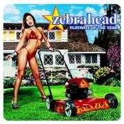 Details Zebrahead - Playmate Of The Year