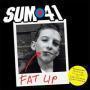Details Sum 41 - Fat Lip