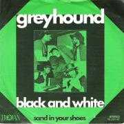 Details Greyhound - Black And White