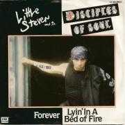Details Little Steven and The Disciples Of Soul - Forever