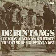 Coverafbeelding De Bintangs - He Didn't Wanna Go Home