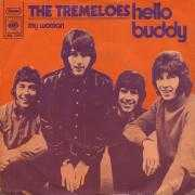 Coverafbeelding The Tremeloes - Hello Buddy