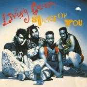 Coverafbeelding Living Colour - Solace Of You