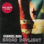 Coverafbeelding Gabriel Rios - Broad Daylight