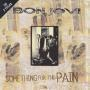 Details Bon Jovi - Something For The Pain