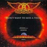 Coverafbeelding Aerosmith - I Don't Want To Miss A Thing