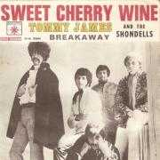 Details Tommy James and The Shondells - Sweet Cherry Wine