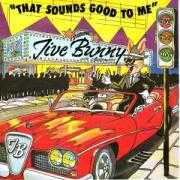 Details Jive Bunny and The Mastermixers - That Sounds Good To Me