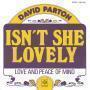 Details David Parton - Isn't She Lovely