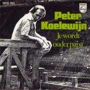 Details Peter Koelewijn - Je Wordt Ouder Papa