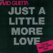 Coverafbeelding David Guetta - Just A Little More Love