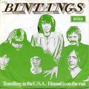 Coverafbeelding Bintangs - Travelling In The U.S.A.