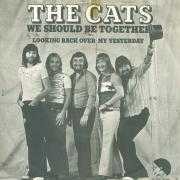 Details The Cats - We Should Be Together
