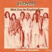 Details Pussycat - Wet Day In September