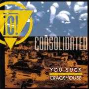 Details Consolidated - You Suck