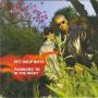 Coverafbeelding Pet Shop Boys - Paninaro '95
