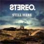 Details Stereo - Still Here