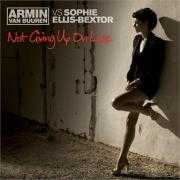 Details Armin van Buuren vs Sophie Ellis-Bextor - Not giving up on love